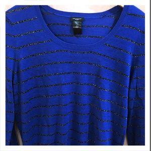 Ann Taylor Blue Festive Sweater